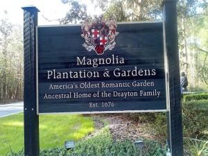 Charleston Magnolia Plantation