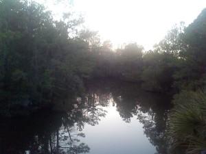 park near Charleston