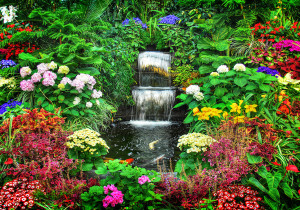 garden with waterfall