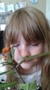 Caterpillars to Butterflies take 10 002